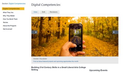 Screenshot of Digital Competencies website